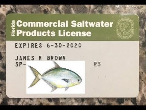 Pompano Fishing Commercial License - 2020