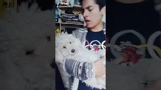Download Lagu Agu Agu Carajo (Parodia ASU MARE) - By: TikTok mp3
