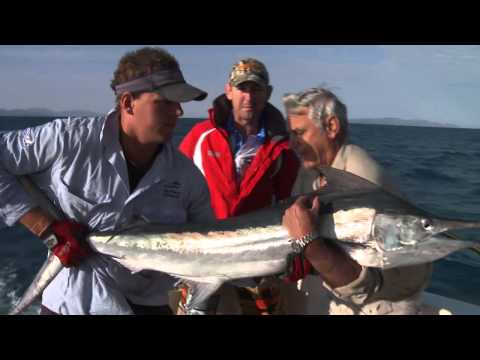 Marlin Townsville Part 1 Northern Conquest Charters