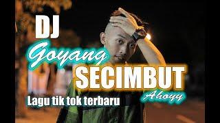 DJ GOYANG ALA SECIMBUT AHOY | LAGU TIK TOK TERBARU 2019