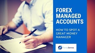 Forex Managed Accounts - How to Spot a Great Money Manager - Forex James