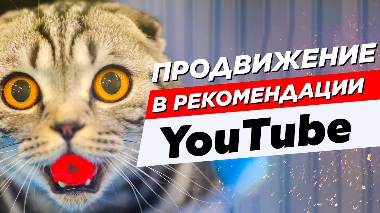 Продвижение в топ ютуб размещение ссылок Автозаводский мост