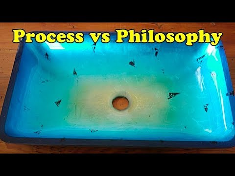 Scavenger Life Episode 353: Process vs Philosophy
