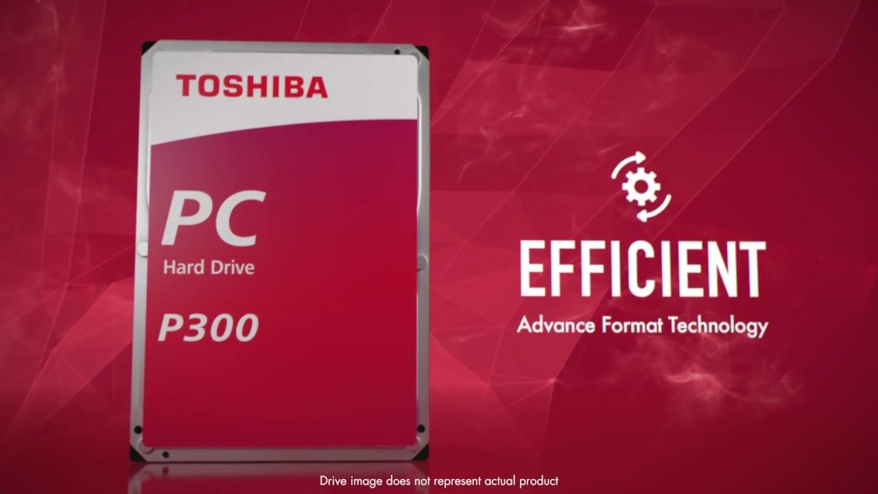 Toshiba - Internal Hard Drives - P300