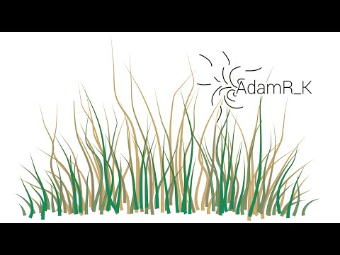 adobe how to add draw tool to quick tools