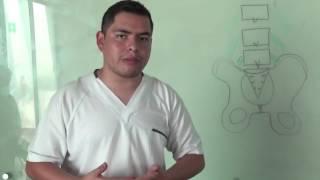 Ciática y Falsa Ciática, Quiropractica, Lic. Aldo Martinez, Focko Capsula YouTube Videos