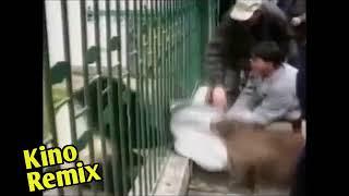 фильм Иван Васильевич меняет профессию прикол Шпак kino remix