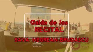 SAVA NEGREAN BRUDASCU - GALDA de JOS