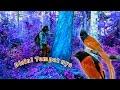 Hutan Ini Sarangnya Burung Cantik Penelusuran  Mp3 - Mp4 Download