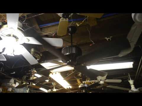 Fasco Ceiling Fan Wiring - Wiring Diagram Sheet on