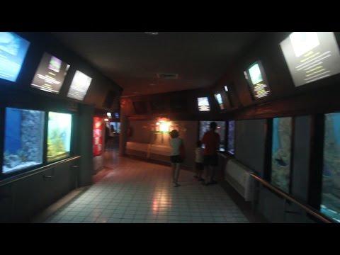 Trang Aquarium. Rajamangala Aquarium, Sikao, Trang Thailand.