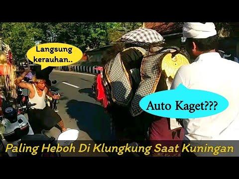 Paling HEBOH Di KLUNGKUNG 2021 , Ngelawang Barong Bangkung, Penonton Kerasukan, Ngigel Rangda