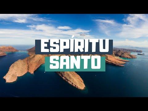 Guía definitiva de Isla Espíritu Santo en La Paz, Baja California Sur