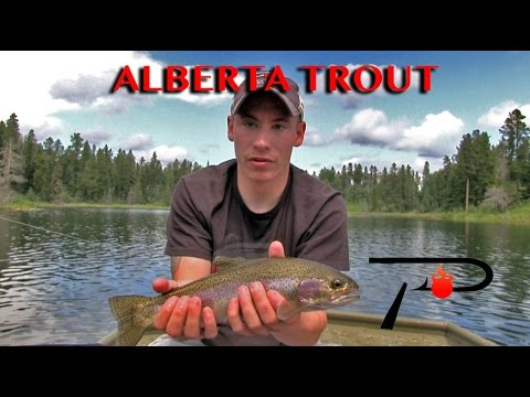 Alberta Trout Fishing