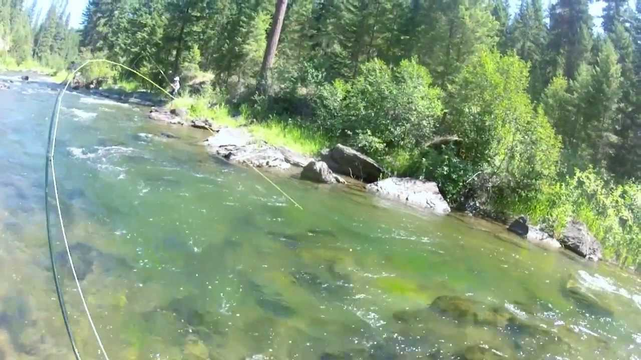 Fly fishing montana 2013 gopro hd hero 2 youtube for Montana out of state fishing license