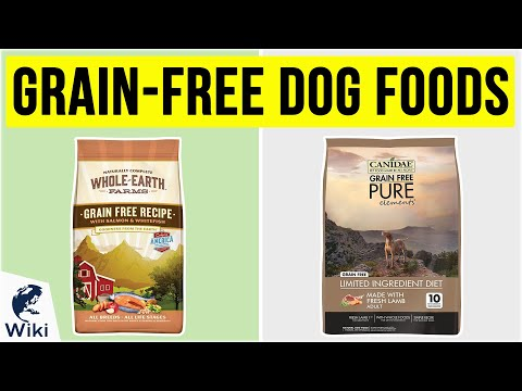 10 Best Grain-Free Dog Foods 2020