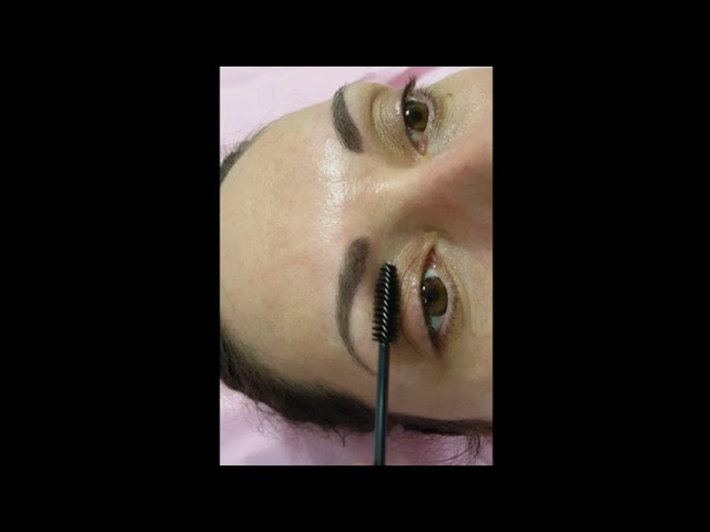 Healed Microblading Eyebrows 1 session by El Truchan @ Perfect Definition