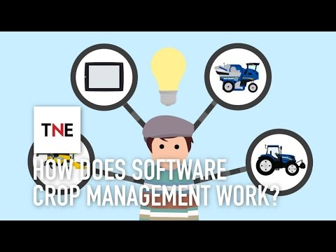 Growing more, using less: how does software crop management work? | The New Economy