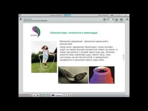 Глисты аскариды: симптомы и лечение у взрослых и детей