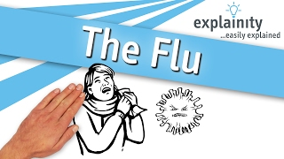 The Flu explained (explainity® explainer video)