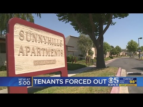Hundreds At Milpitas Apartment Complex Set For Eviction