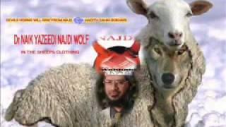 Zakir Naik Hatred for Prophet Muhammad Salallaho aliayhay wasullam 2 2