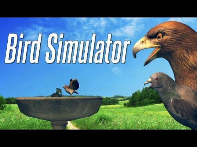 شرح تحميل وتثبيت لعبة محاكي الطيور Bird Simulator بحجم 200 ميجا فقط