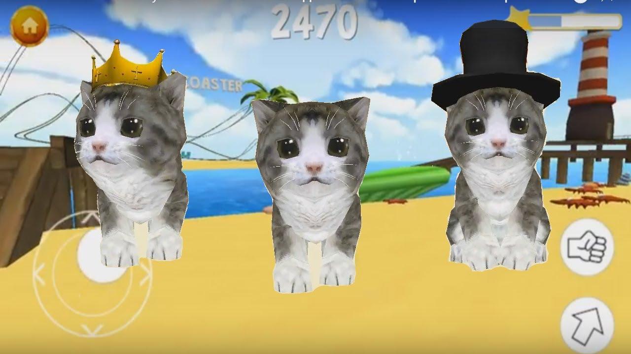 Игра кот пляж