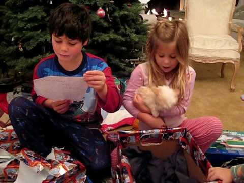 Kids Getting a New Puppy on Christmas
