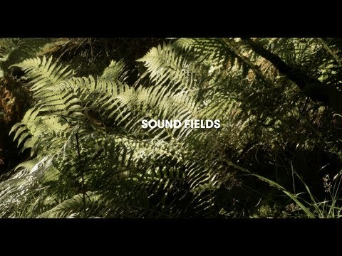 A brief documentary about the sensorial wonders of field recording