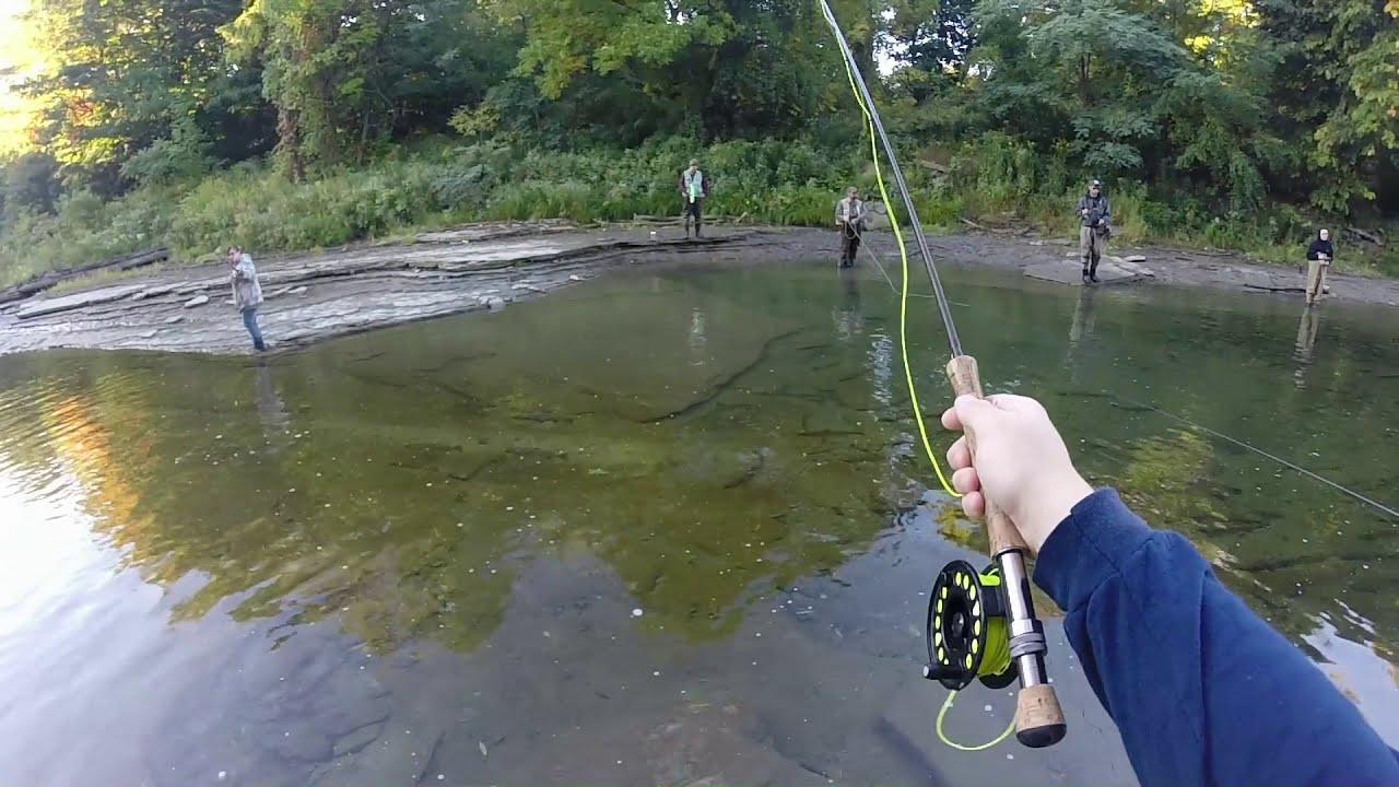 Lake erie pa tributary steelhead fly fishing youtube for Steelhead fishing pa