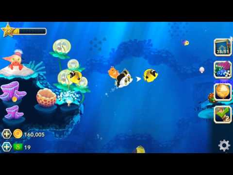 Missions: Creating a School of Fish in Splash!