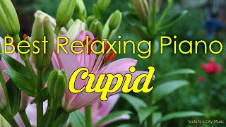 Cupid 🌺 Best relaxing piano, Beautiful Piano Music | City Music