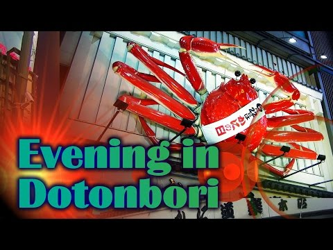 Evening in Dotonbori 道頓堀 / Osaka HD