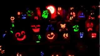 Rise of the Jack o'lanterns at Old Westbury Gardens