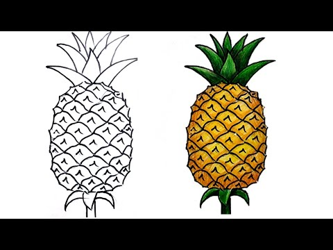 How To Draw Pineapple Step By Step (very Easy)