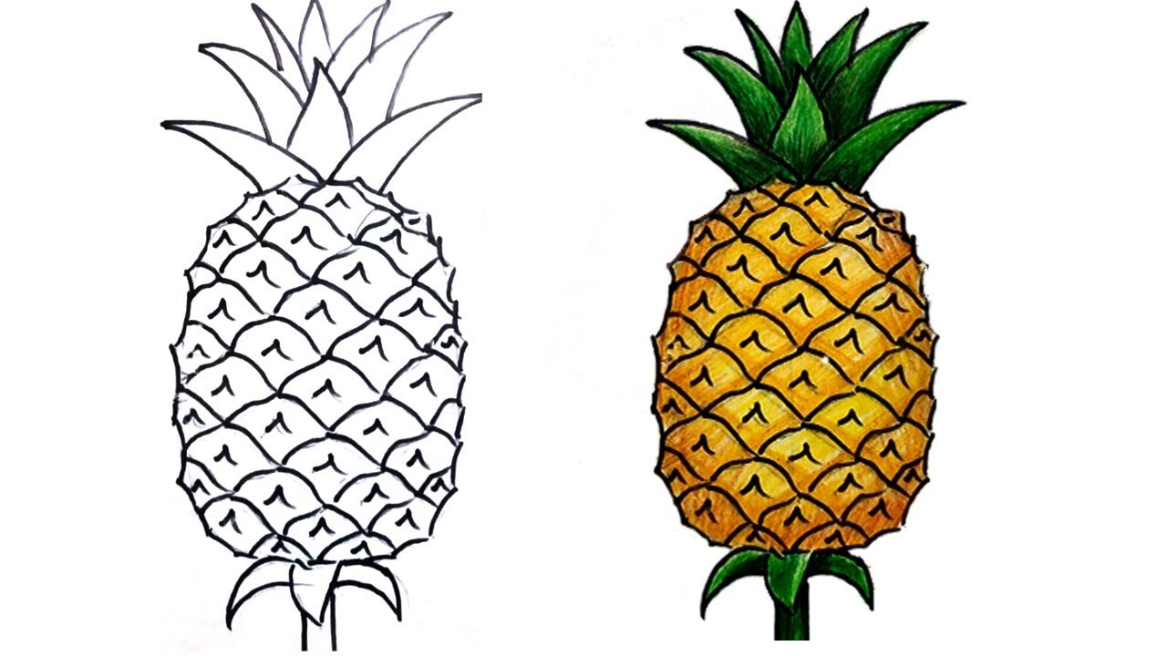 how to draw pineapple step by step (very easy) - YouTube
