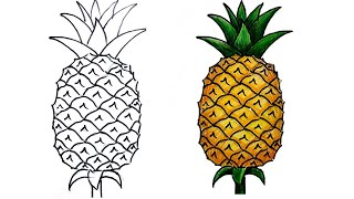 pineapple easy draw very drawing step drawings painting realistic