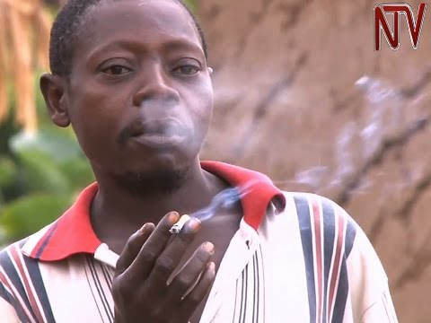 Tobacco control law takes effect