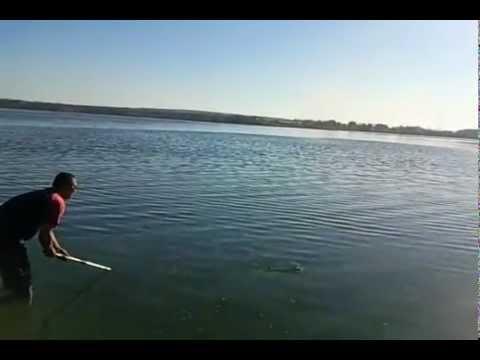 Рыбалка в Донецкой Видео! Видео сёрфинг