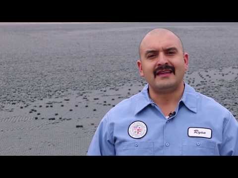 LADWP   Water Treatment Operator