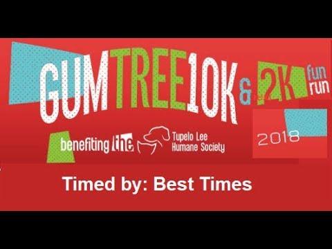 Gumtree 10K Run  (Tupelo, MS. 2018)