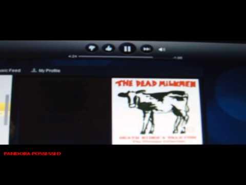 Pandora Radio Possessed