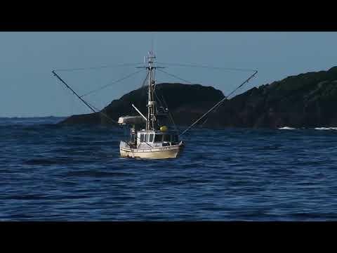 Marine Institute - Marine Spatial Planning and Management