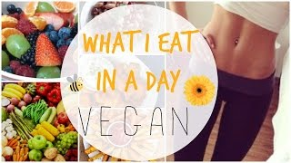 what i eat in a day hclf vegan   healthy easy cheap   vegan teen