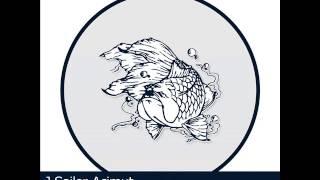J. Sailor - Acimut (Original mix) Deepmentality Records 058
