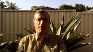 شهادة شربل بعيني بصديقه الدكتور عصام حداد    2009.