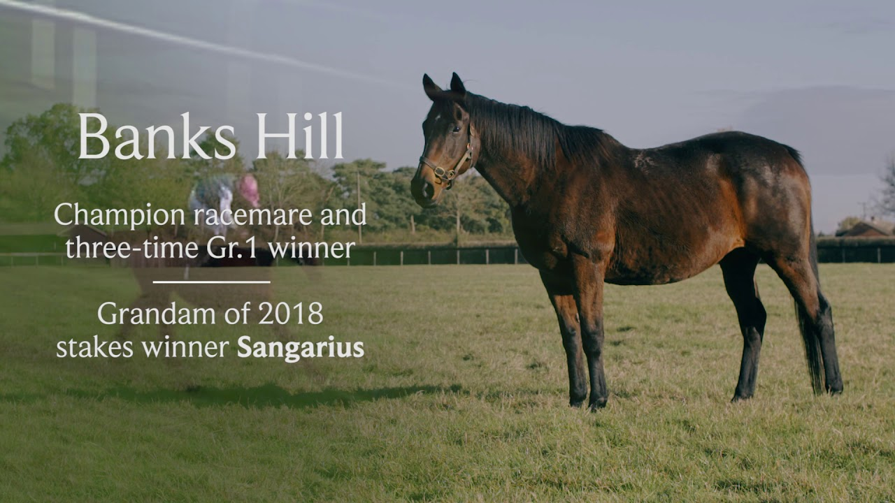 Juddmonte replicate Frankel mating as 2019 plans are
