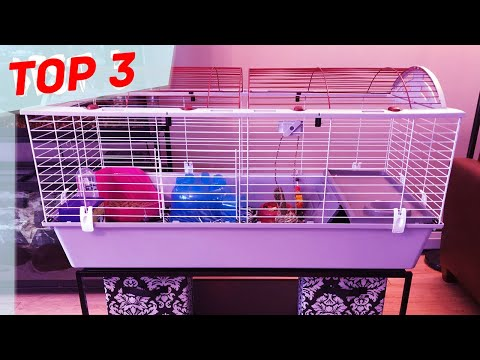 top-3-best-hamster-cages-in-2020