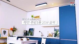 비츠온 LED 마빈 주방1등 25W 블랙